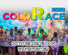 2017 Color Race