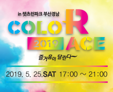 2019 COLOR RACE